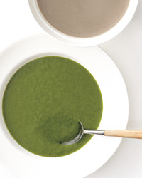 cream-of-spinach-med108164.jpg