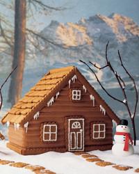 gingerbread-1204-mla101008.jpg