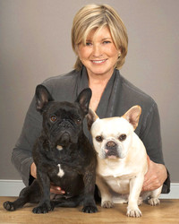 Meet All of Martha's Pets Over the Years