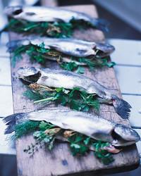 smoked-trout-0900-mla98046.jpg