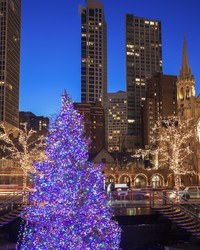 Chicago's Official Christmas Tree for 2018 is Here!