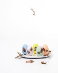 Easter Eggs with Decoupaged Feathers