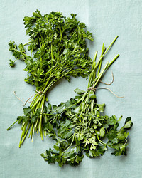 Parsley: All the Delicious Ways to Use It Up