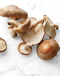 Everything You Need to Know About Shiitake Mushrooms