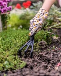 Understanding Your Plant Hardiness Zone