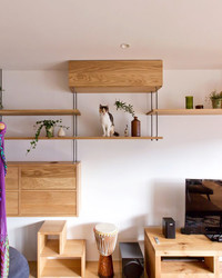 Win-Win: This Cat Playground Also Maximizes Storage Space