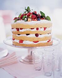 berry-shortcake-0399-mla97681.jpg