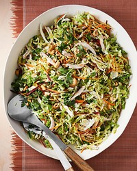 ginger chicken slaw