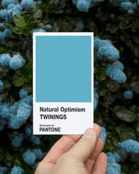 Pantone's Newest Color Promises to Cheer You Up (and We're Feeling It)