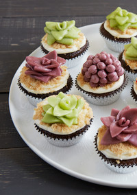 Spectacular Succulent Cake Decorations -- No Piping Required