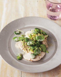 fava-bean-chicken-0511mld107111.jpg