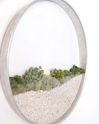 Add Living Art to Your Walls With These Minimalist Framed Planters