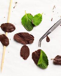 chocolate mint leaves