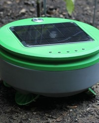 Watch How This Cute Robot Works to Kill All the Weeds in Your Garden
