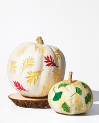 A Fun, New Way to Carve Pumpkins: Easy Etched Leaf Patterns