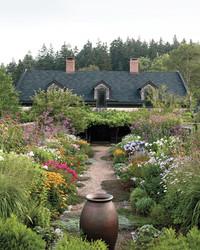 Four Seasons Organic Farm