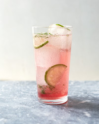 mint-fizz-drink-167-d112097-0615.jpg