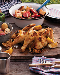 dinner-042-f-0611mld106657-chicken.jpg