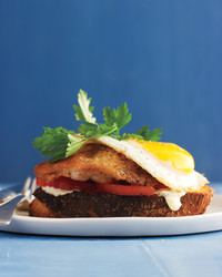 egg-chicken-sandwich-450-med110298.jpg