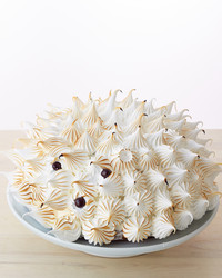 hedgehog-meringue-cake-077-d112178.jpg