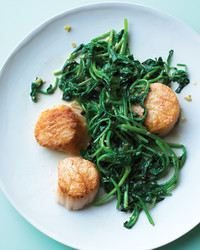 scallops-watercress-0509-med104695.jpg