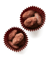 Chocolate-Covered Almond Pralines