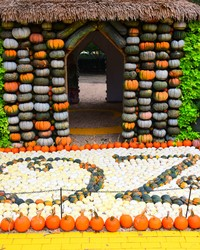 "90,000 Pumpkins Recreate ""The Wizard of Oz"" at the Dallas Arboretum This Fall"