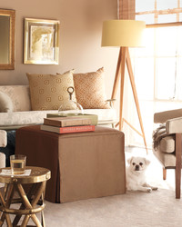 Creature Comforts: Decorating with Pets in Mind