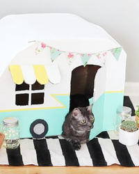 Watch How to Make This Adorable DIY Cat Camper