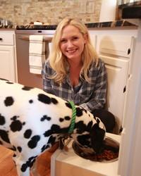 3 DIY Ways to Make Your Home Pet-Safe
