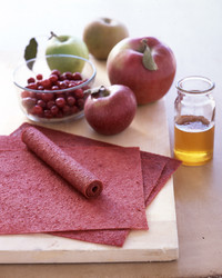 apple cranberry fruit leather