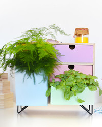 Bring the Garden Indoors! Turn a Set of Drawers Into a Planter