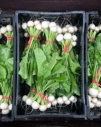 成长的关系:农民,厨师和蔬菜