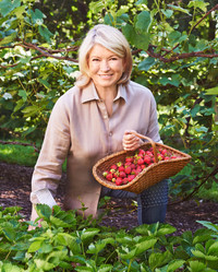 Strawberries with Martha!