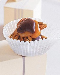 ml711k21_1197_chocolate_covered_turtles.jpg