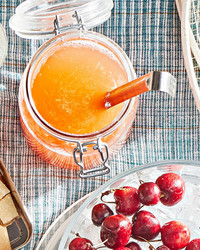 ginger-campari lager punch