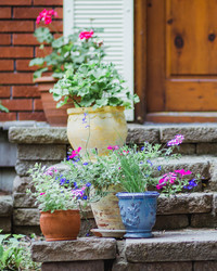 How to Compose Interesting, Beautiful Outdoor Planters