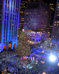 5 Fascinating Facts About the Rockefeller Center Tree This Year