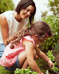 Why You Should Start a Family Garden
