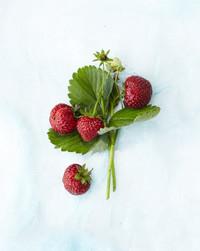 Good Eats: The Health Benefits of Strawberries (+ Recipes)
