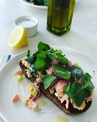 It's Healthy and Delicious, Here's Why You'll Want to Try This New Salmon Salad