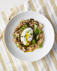 orzo risotto mushrooms