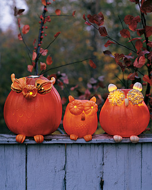 12 Cute Pumpkin Ideas