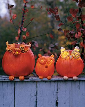 13 cute pumpkin ideas - Pumkin Ideas