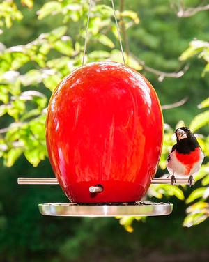 Garden Ornaments and More Goodies for Outdoor Living