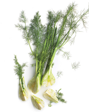 25 Truly Fabulous Fennel Recipes