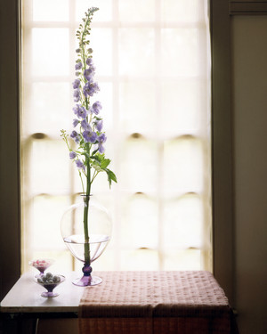 Delphinium Arrangements