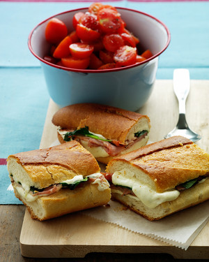 Grilled Sandwich and Panini Recipes