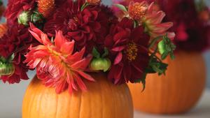 Turn a Pumpkin into a Vase