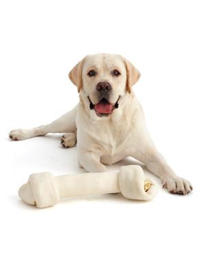 Dog Treat Cheat Sheet